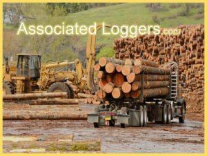 Associated Logger Exchange Ideas!