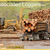 Loggers & Timber Operators